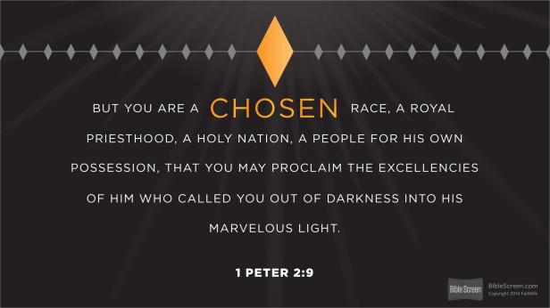 I Peter 2.9