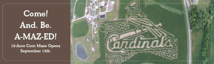 Cardinal Corn Maze