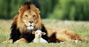 lion and lamb gentle and strong
