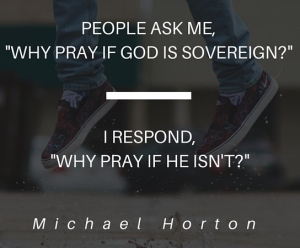 Michael Horton Quote